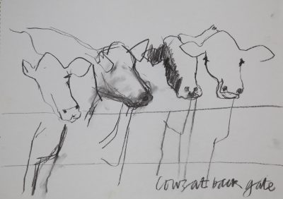 charcoal drawing, cows, farms